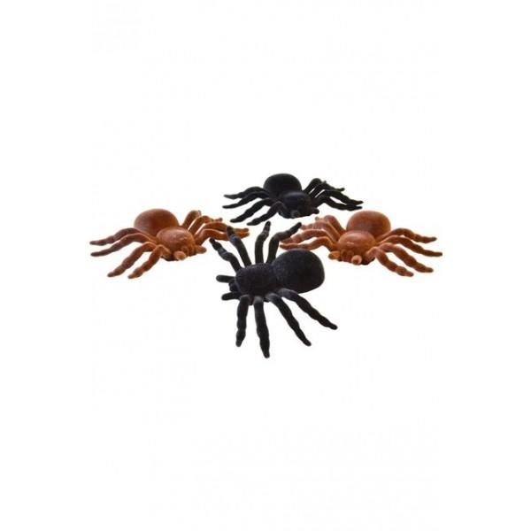 Fausse Araignée