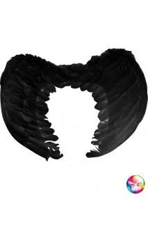 Ailes Noire 50cm