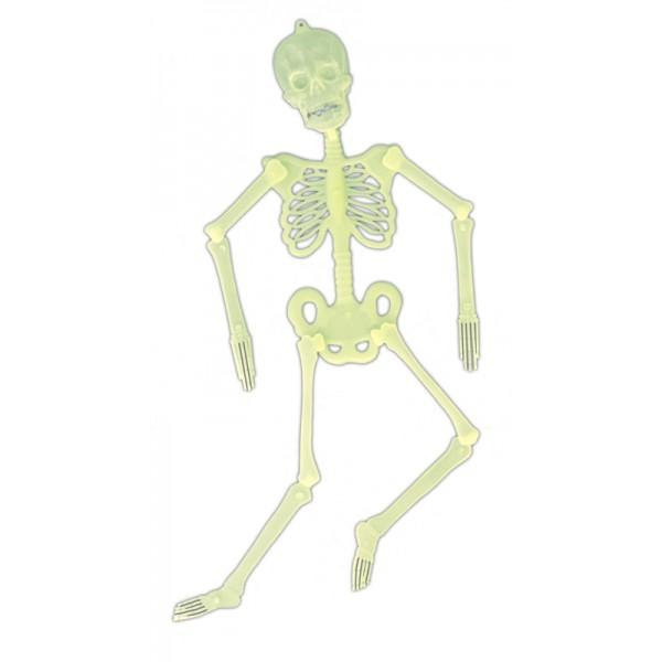 Squelette Articulé Phospho 32 cm