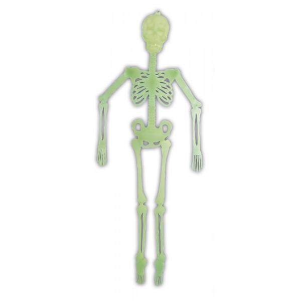 Squelette Articulé Phospho 140 cm