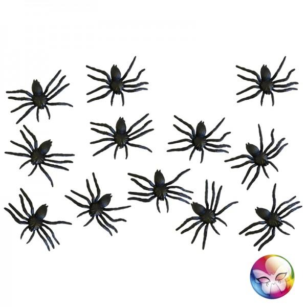12 Araignées Noires