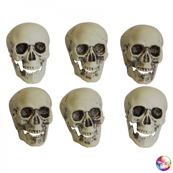 6 Crânes De Mort