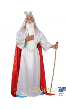 Déguisement druide gaulois