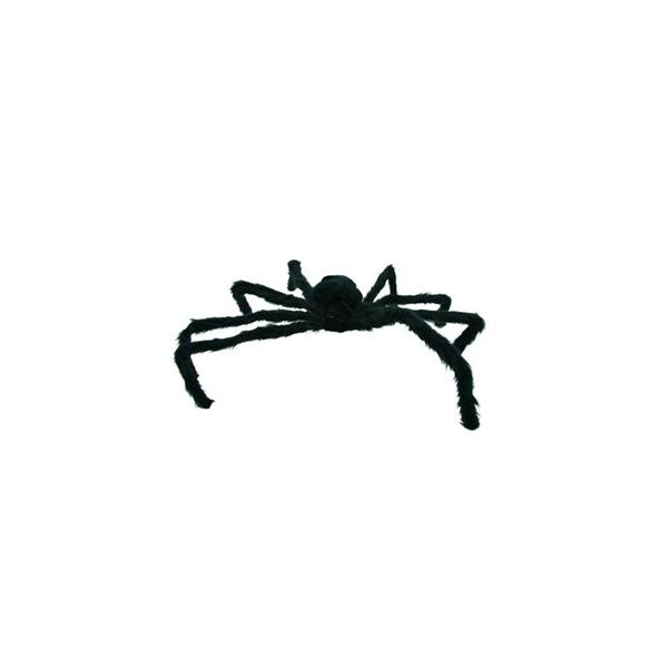 Araignée Géante Velue