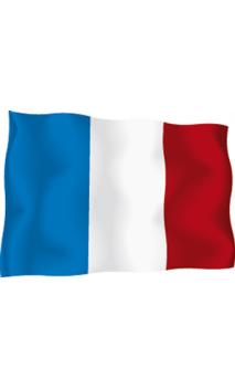 Drapeau France 90cm
