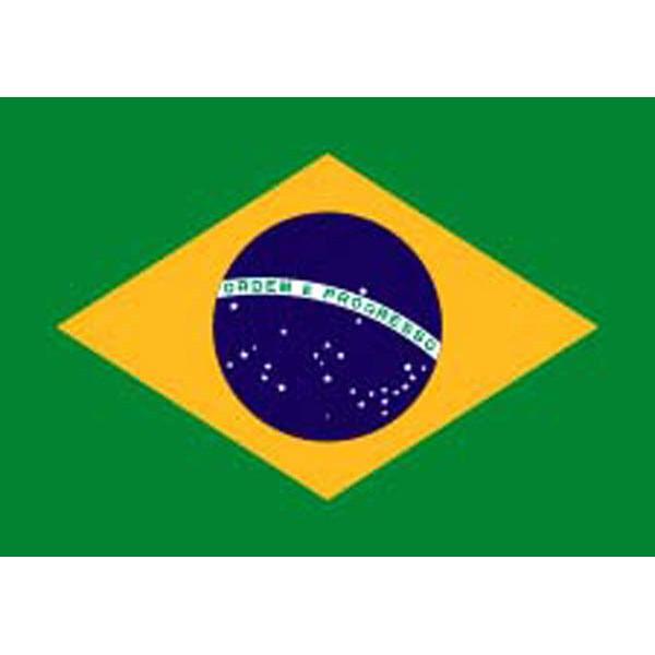Drapeau Brésil 150cm