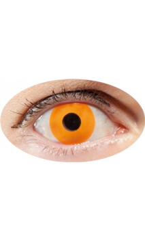 Lentilles Oeil Orange