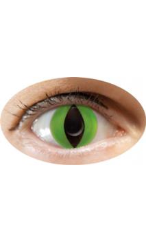 Lentilles oeil de chat vert