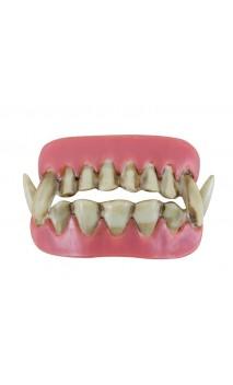 Dentier Double