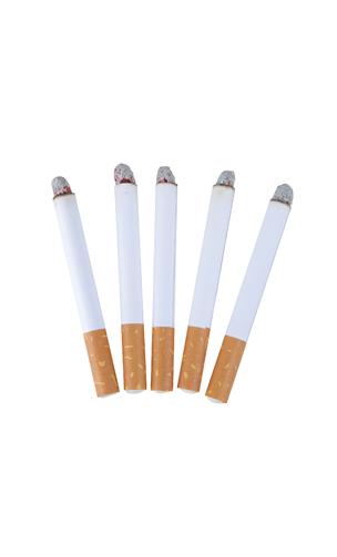 5 fausse cigarette