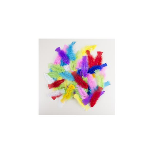 50 plumes multicolore