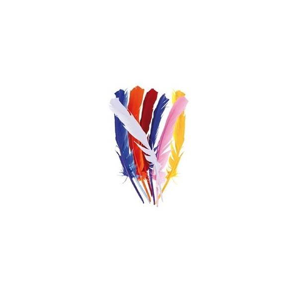 12 Plumes couleurs