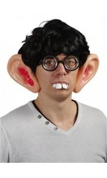 Grande oreilles
