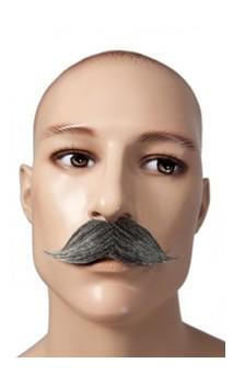 Moustache gentleman gris