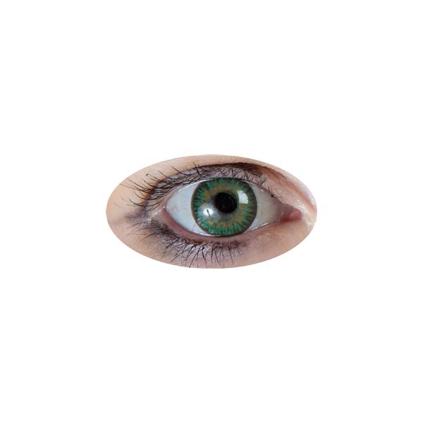 Lentille Iris Vert